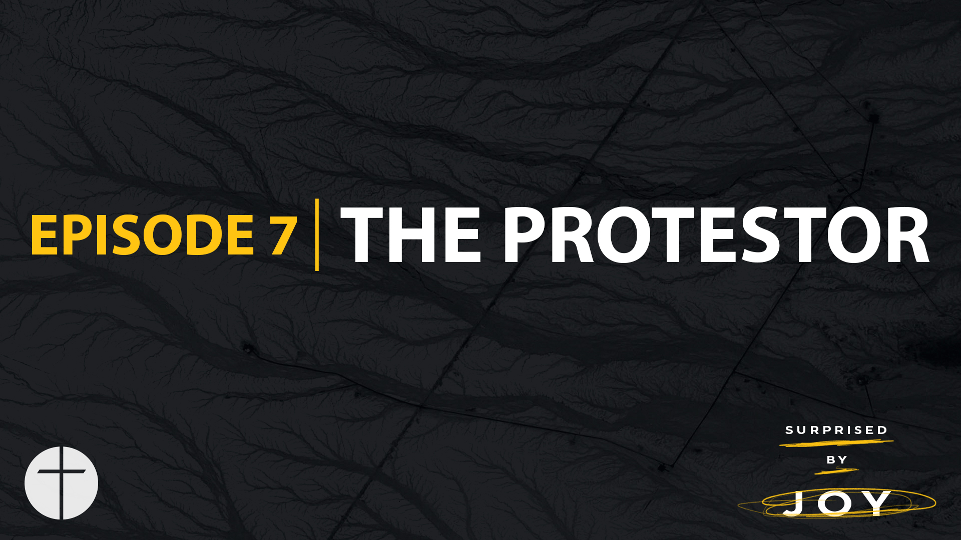 Episode 7 | The Protestor Image